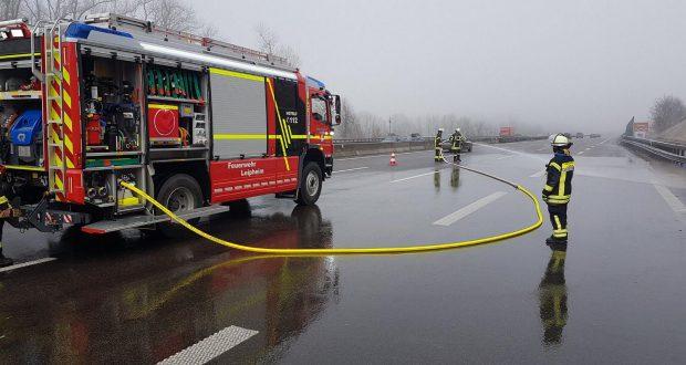 Schwan-Autobahn-8-Leipheim-620x330